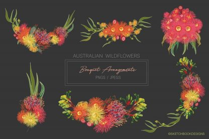 Australian Wildflowers Set