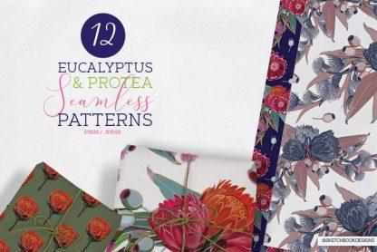 Eucalyptus & Protea Floral Seamless Pattern Set